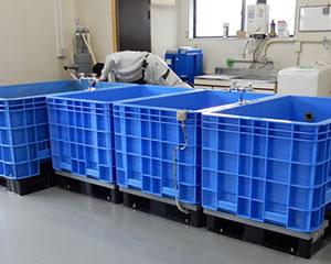 電気集塵機洗浄業務